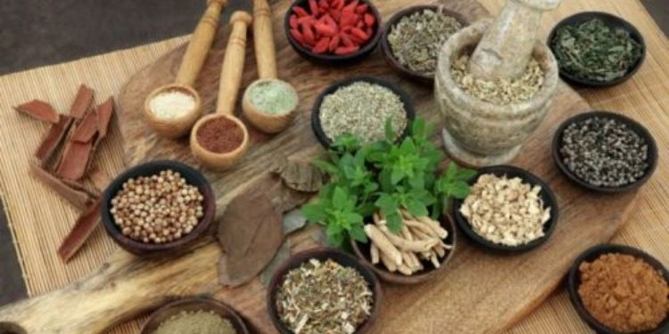 story-how-does-natural-medicine-help-to-control-corona-infection