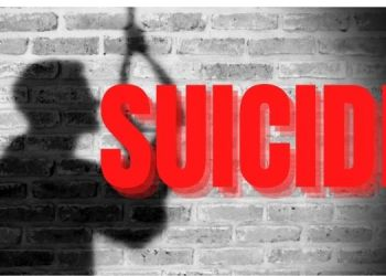 Pune Crime News | women committed suicide due to harassment by in laws.
