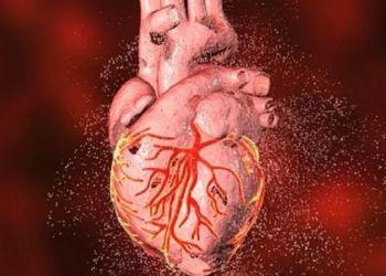 World heart day 2021 world heart day 2021 9 important symptoms of heart disease heart attack.