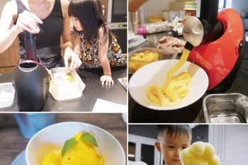 [好物] 簡單就可以做出健康天然好吃的水果冰淇淋及冰棒-澳洲Cooksclub水果冰淇淋機
