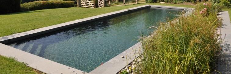 Transformation piscine - baignade naturelle