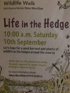 Wildlife Walk: Life in the Hedge @ Denso Marsten Nature Reserve