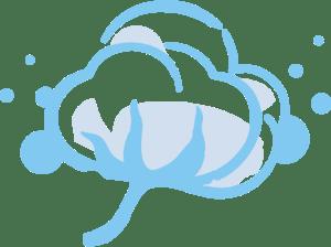 Logo fleur de coton