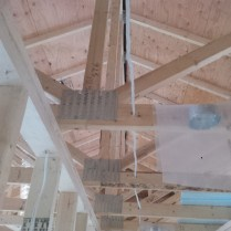 Oops, drilled the trusses!