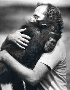 Ken with Moja - Washoe project. Signing chimpanzee