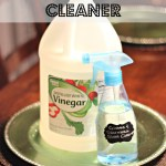 Glass and Stainless Steel Cleaner (Spring Cleaning Series Part 5)