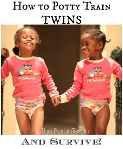 how to potty train twins