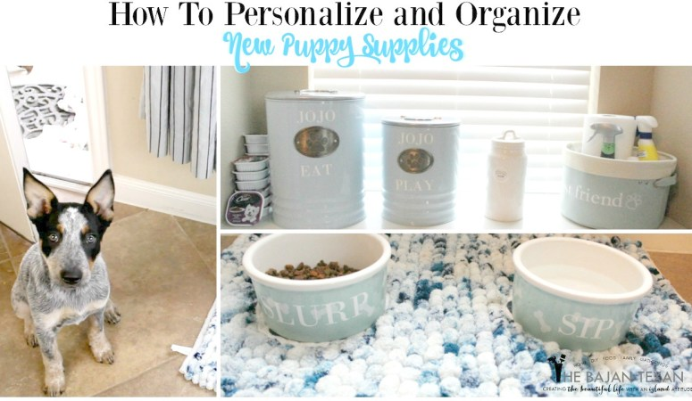 How to Personalize and Organize New Puppy Supplies
