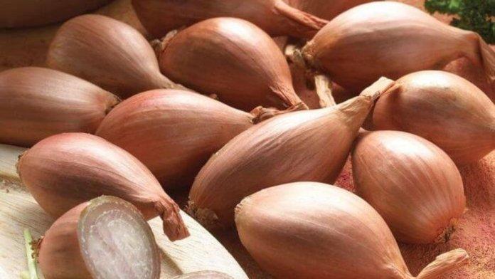 Qué son los chalotes Nutrición beneficios y sustitutos