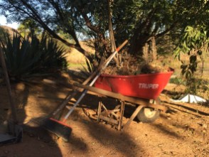 Wheelbarrow Decor