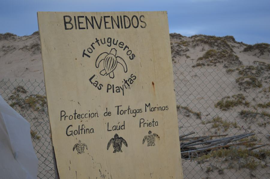 welcome sign at turtle beach
