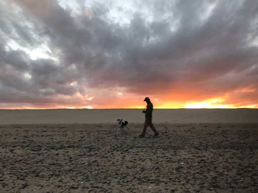 a man walks his dog on the beach at sunset