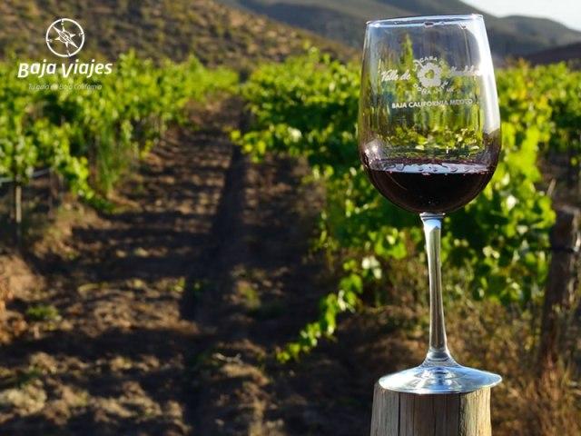 Degustación de vinos en Casa de Doña Lupe