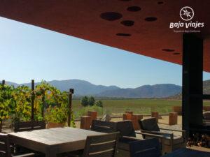Vista desde la terraza de la Vinícola Monte Xanic, en Valle de Guadalupe