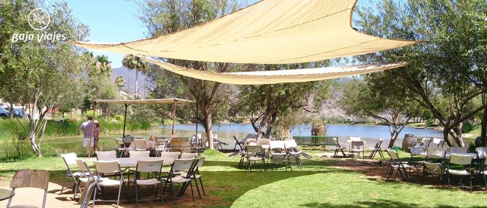 Vinícola Monte Xanic Vista al Lago
