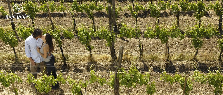 Pareja disfrutando de los viñedos en la Ruta del Vino en Ensenada, Baja California