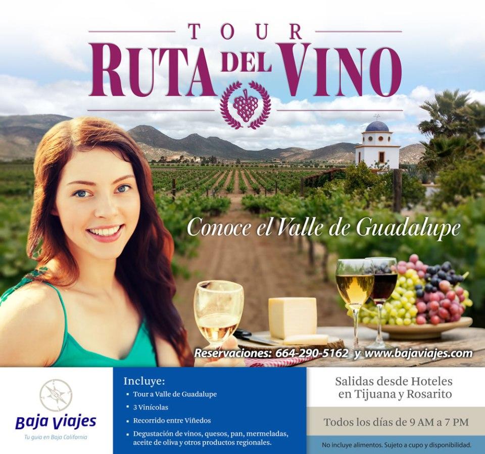 Tour al Valle de Guadalupe, Básico, Colectivo. Ruta del Vino en Ensenada.
