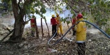 Reporta Protección Civil 86 incendios forestales en Guerrero 7