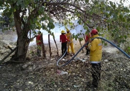 Reporta Protección Civil 86 incendios forestales en Guerrero 3