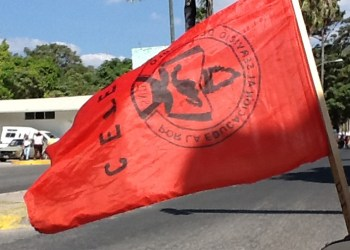 Marchan de nuevo en Chilpancingo; exigen justicia por asesinato de Antonio Vivar 8