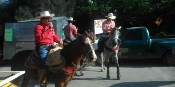 Sin Ejército ni gobierno; celebran en Tixtla natalicio de Vicente Guerrero 10