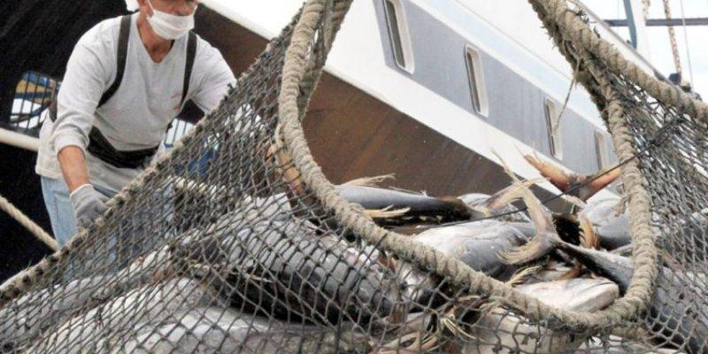 México sancionará a E.U. por afectación a productores de atún