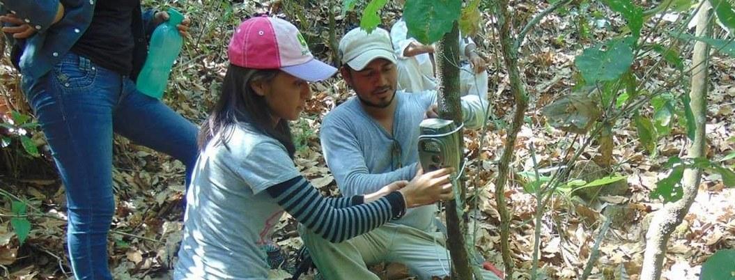 Registran presencia de jaguares, pumas y venados en sierra de Guerrero 1