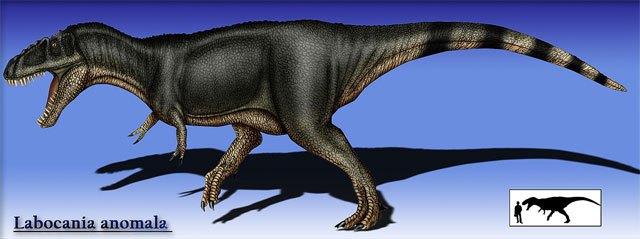 ¿Qué especies de dinosaurios habitaron en México? 13