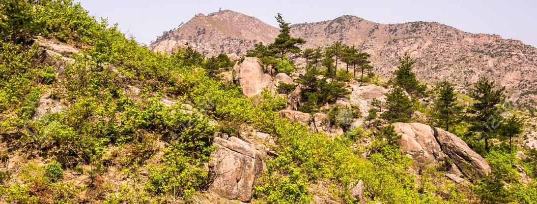 Coreas celebrarán aniversario de programa turístico a montaña Kumgang
