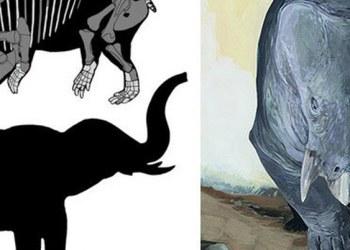 Descubren nueva especie de mamífero que convivió con dinosaurios 1