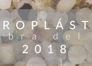 Microplástico, la palabra del año en busca de conciencia ecológica 2