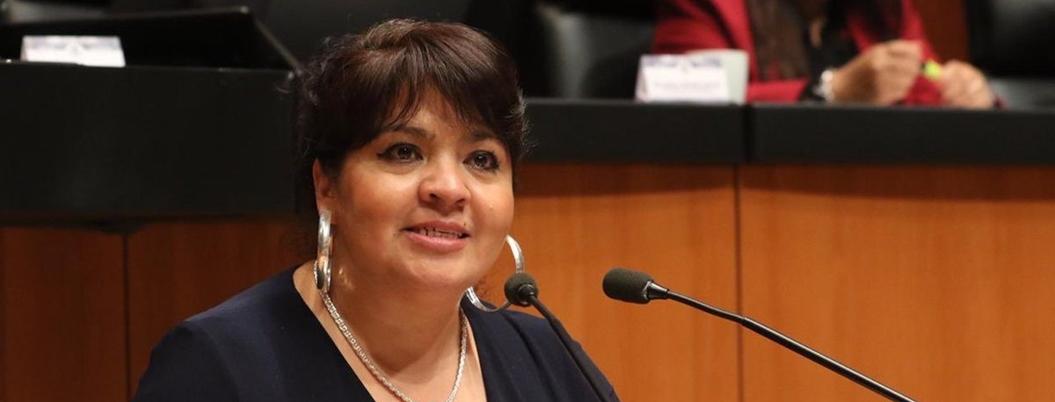 Nestora dice no a una Guardia Nacional militarizada