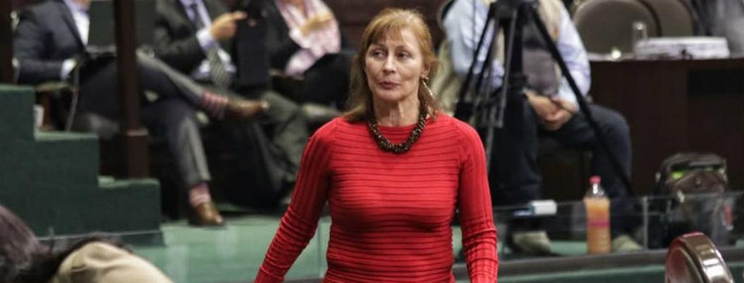Critican a Tatiana por advertir riesgos de Guardia Nacional militarizada