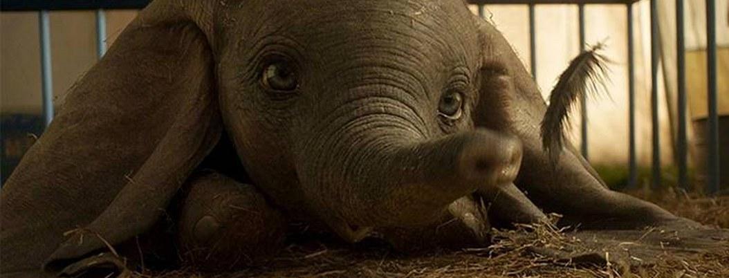 Este es el cartel de la nueva película de Disney, Dumbo