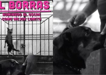 'El Borras'; de callejerito a estrella de Hollywood 1