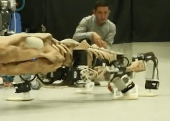 Usan fósiles de hace 300 millones años para crear robot de dinosaurio 1