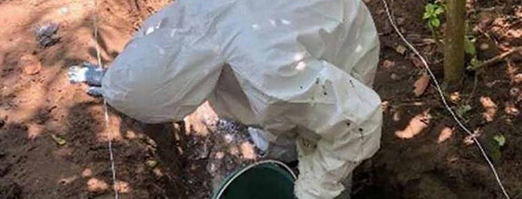 Colima: localizan 11 fosas clandestinas con 19 cuerpos