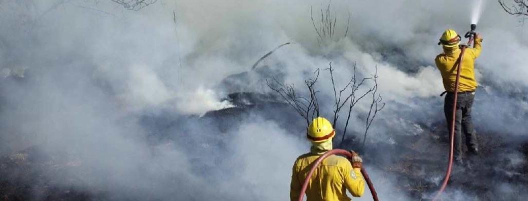 Temporada de incendios afectó 288 mil 641 hectáreas, según Conafor