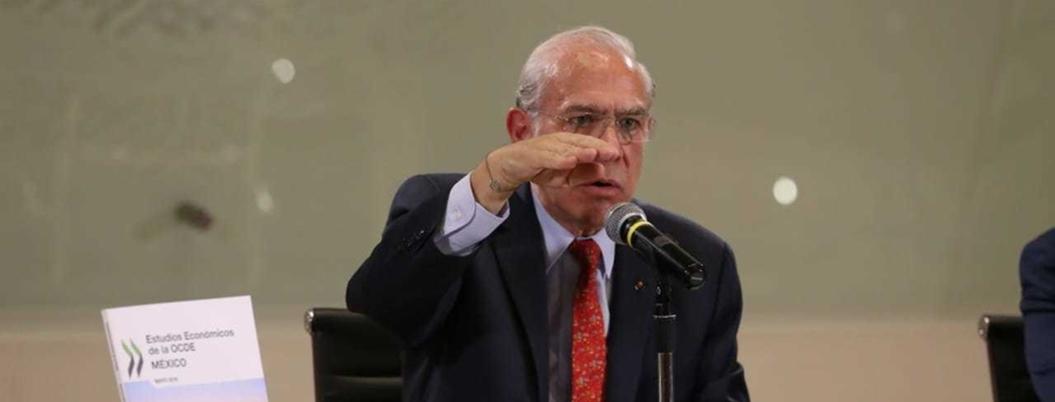 """""""Proyectos de AMLO no deben atentar con la naturaleza"""": OCDE"""