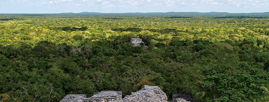 Invasores de áreas protegidas serán encarcelados hasta por 20 años