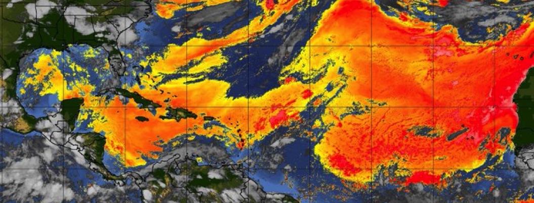Nube del Sahara cubre cercanías de Yucatán; llegará hoy a Monterrey