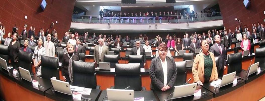 Senado paga sueldazos a asesores sin estudios