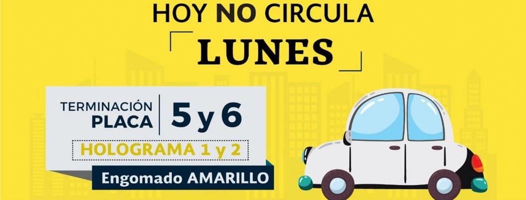 Hoy no circulan autos con engomado amarillo, placas 5 y 6