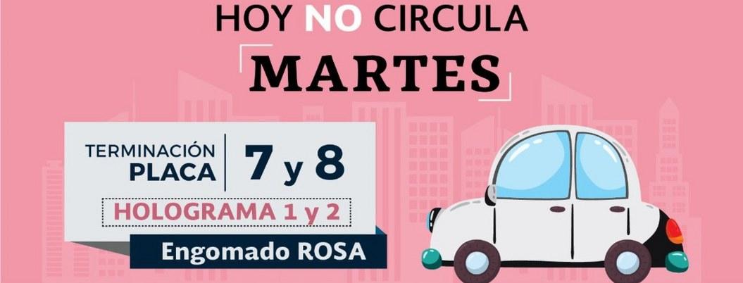 Este martes no circulan autos con engomado rosa y placas 7 y 8
