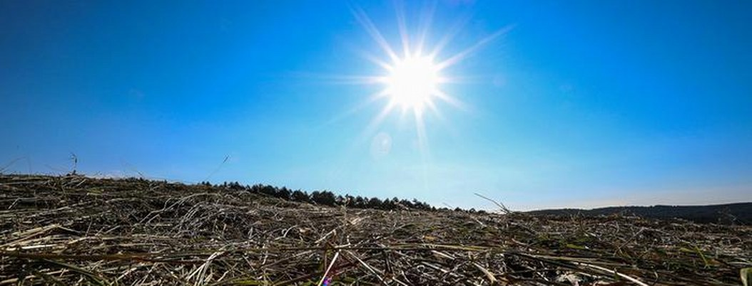 Ola de calor pone en alerta a toda Europa con temperaturas arriba de 40