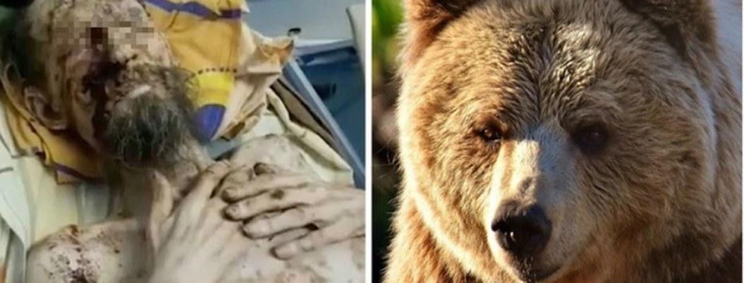 """""""Me guardó como comida"""", relata sobreviviente atrapado en cueva de oso"""