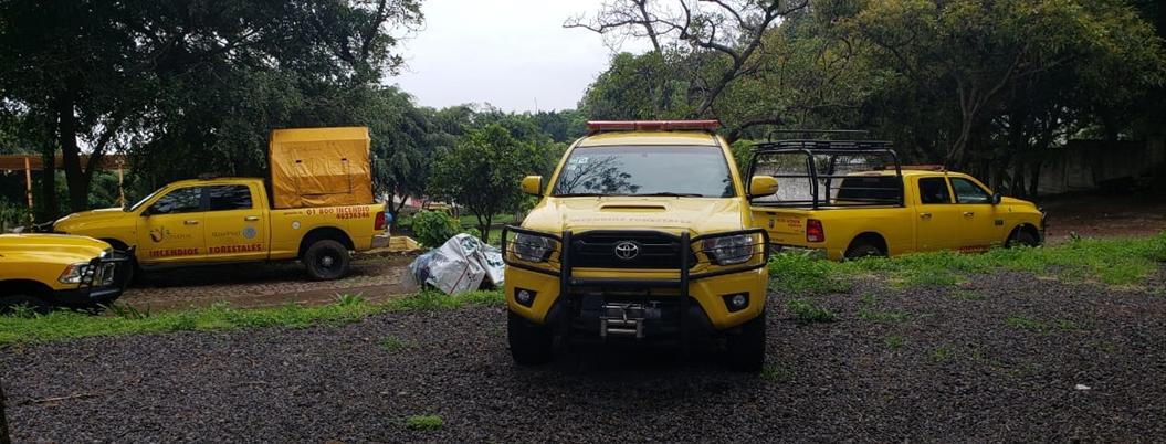 Despiden a 36 trabajadores de confianza en Conafor Morelos