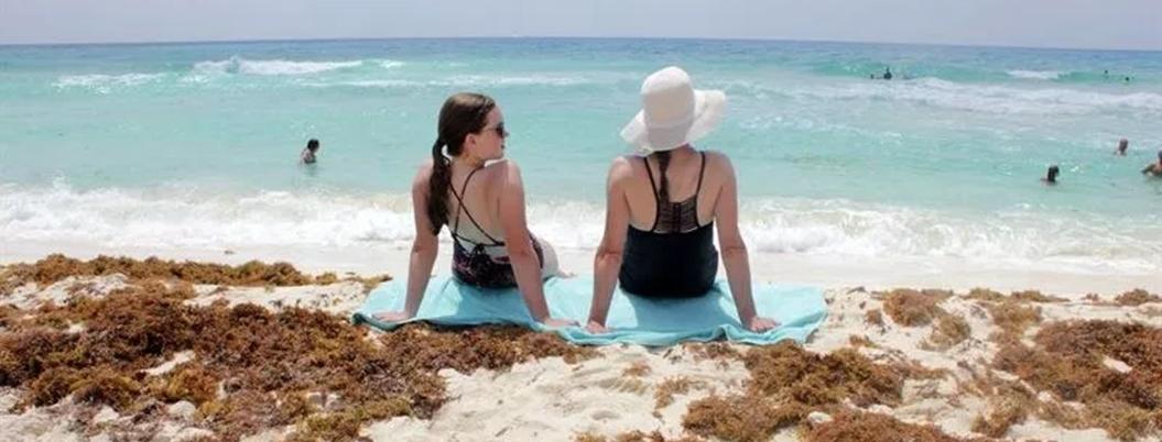 Sargazo invadirá las playas de Quintana Roo