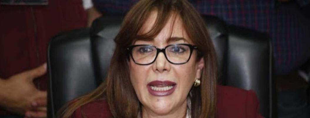 """Polevnsky vuelve a regarla: """"ciudadanía pidió extensión de mandato"""""""