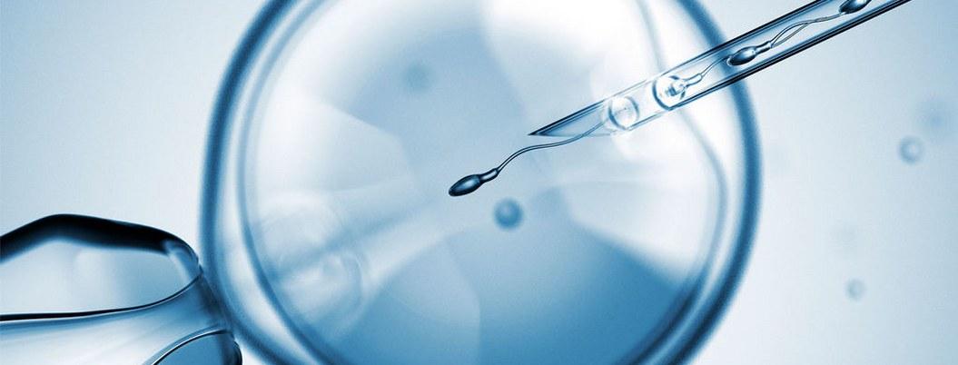 Clínica de fertilidad se equivoca, implanta embriones diferentes